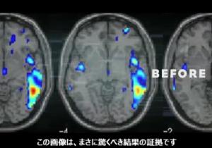 英語速読 訓練前 脳の状態